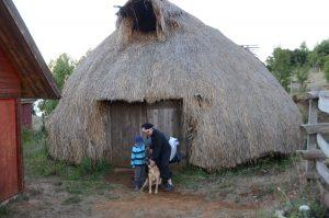 Wohnen in einer Ruka bei den Mapuche