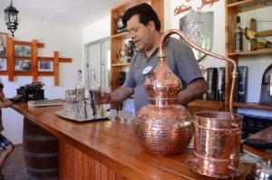 Führung in der Destillerie Doña Josefa